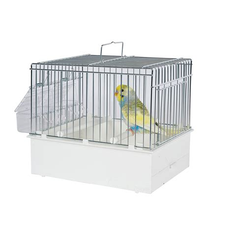 pet ting small parrots birds transport cage white