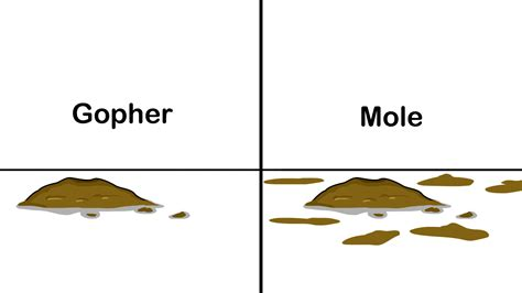 how to get rid of moles in the backyard 3 ways to get rid of moles in your lawn wikihow