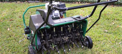 sowing grass seed youtube