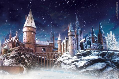 All Comments On Harry Potter Owned A Snow Owl This Is A - leaky visits hogwarts in the snow exclusive event at