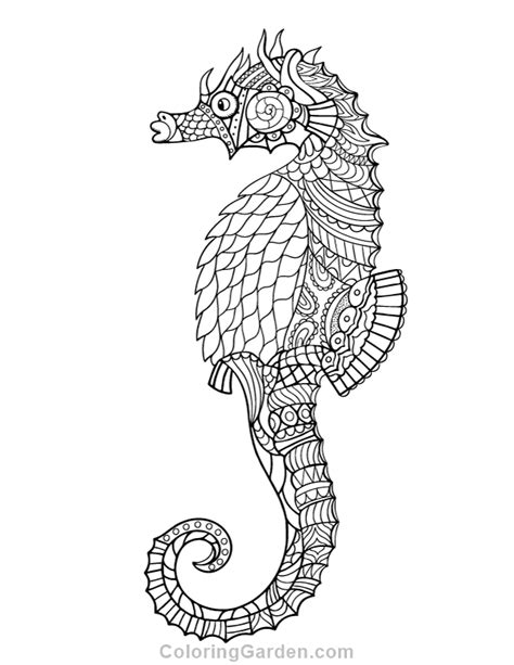 hard seahorse coloring pages free printable seahorse adult coloring page download it