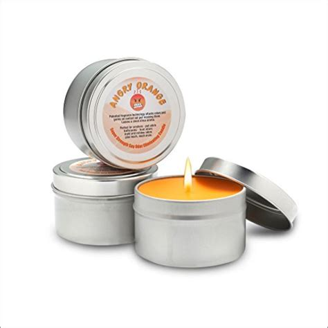 Best Candle For Kitchen Odors by 14 Best Pet Odor Eliminating Candles Scoutknows