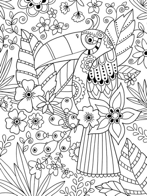coloring pages for adults steunk toucan colouring 214 colouring owls birds