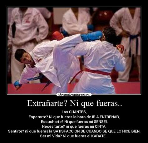 imagenes motivadoras de karate im 225 genes y carteles de karate pag 35 desmotivaciones