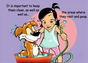 Krylon Clear Spray Paint - how to take care of a pet arts aquatics animals