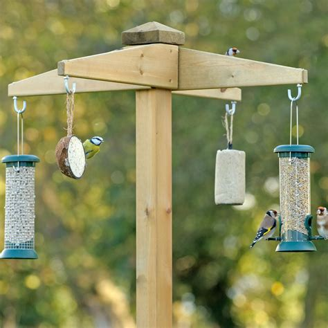 bird feeding station driverlayer search engine