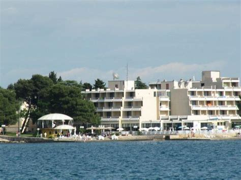 boat tour umag little afternoon tour on the glassbottom boat picture of
