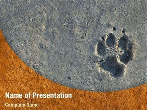 Foot Print Powerpoint Templates Foot Print Powerpoint Backgrounds Templates For Powerpoint Paw Print Powerpoint Template