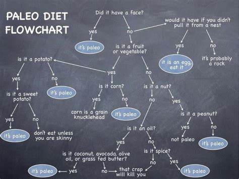 the paleo diet what we eat and why we eat it diary of a nifty