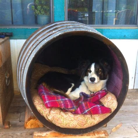 dog house barrel wine barrel dog house doggie stuff pinterest