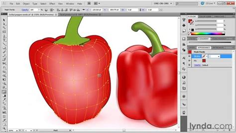 tutorial illustrator mesh tool working with the mesh tool