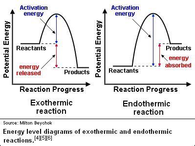 energy profile diagram image gallery exothermic biology
