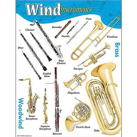 wind section instruments wind instruments educational poster the division into