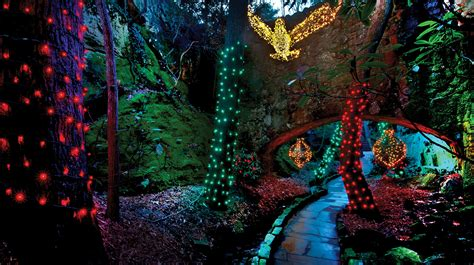 rock city s enchanted garden of lights