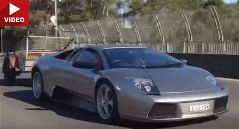 Lamborghini Murcielago Lamborghini Murcielago Towing A Trailer Filled With Goats