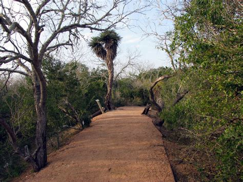 Botanical Garden Corpus Christi South Botanical Gardens Nature Center Reviews Corpus Christi Gulf Coast
