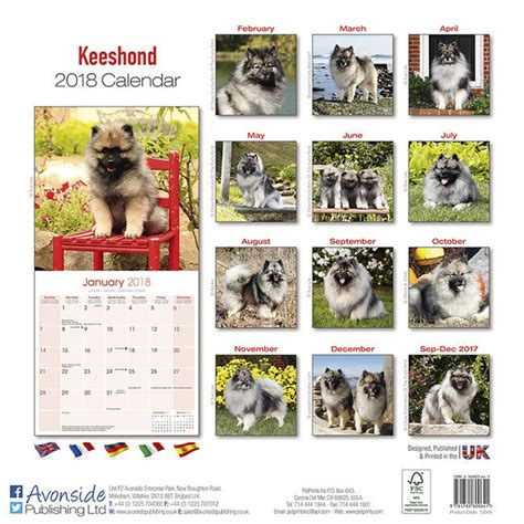 Calendrier Chien 2018 Calendrier 2018 Spitz Loup