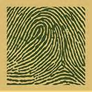 Green Sands Lime Lychee Can 250ml fingerprint on canvas make a bold statement with a