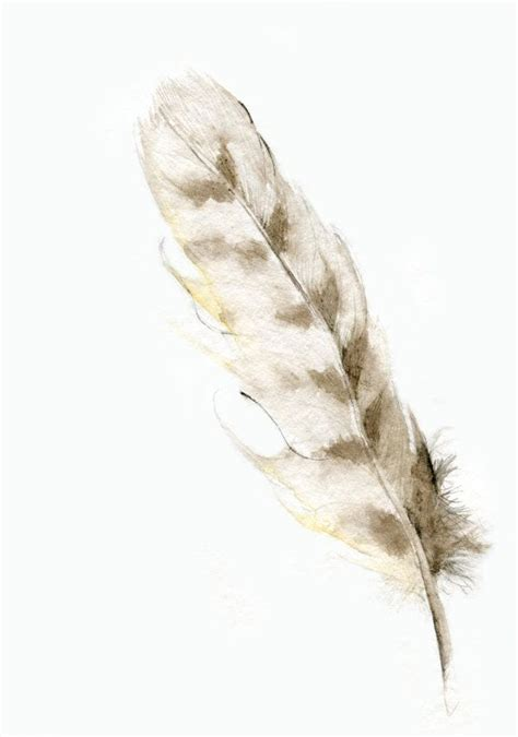owl feather tattoo best 25 owl feather tattoos ideas on feather