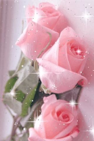 live wallpaper pink rose pretty pink roses live wallpap android apps on google play