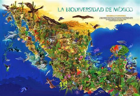 imagenes recursos naturales de mexico 191 cu 225 les son los recursos naturales de m 233 xico recursos