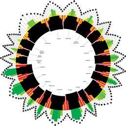 ilsole24ore dati le nuove frontiere della data visualization il sole 24 ore