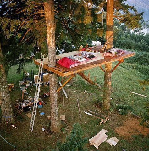 casa su albero fotografo costruisce una casa sull albero di lusso per