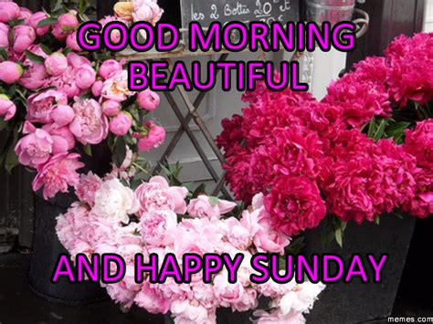 sunday good morning beautiful good morning beautiful and happy sunday