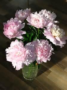 Pink Vase File Bouquet Of Peonies 12 Jpg Wikimedia Commons