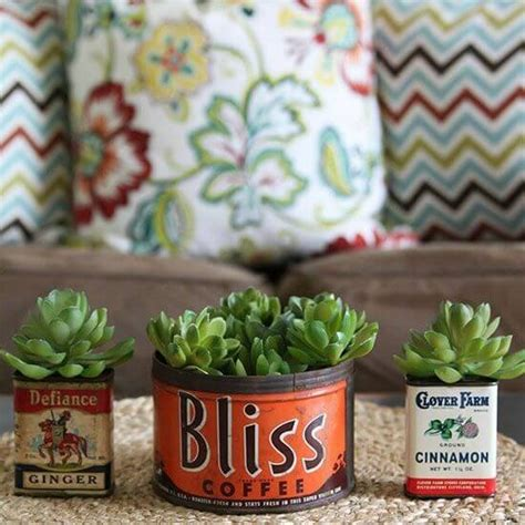 which plants can survive without sunlight 50 ways to decorate with plants even if you have a small