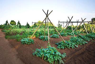 jefferson gardens