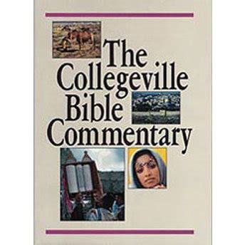 the collegeville bible commentary 1 vol hardcover