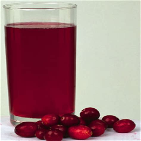 can dogs cranberry juice urinary tract health food