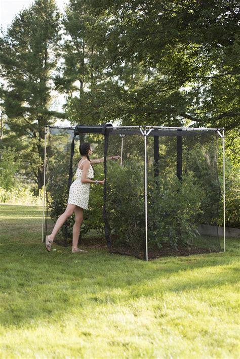 fruit cage large storm proof crop cage  harrod