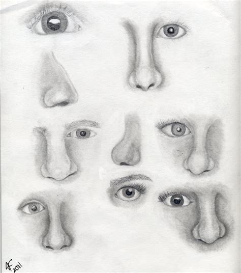 Sketches Nose by Eye And Nose Sketch Dump By Morningglorymeadows On Deviantart