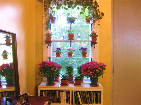 how to arrange indoor plants steps to a window garden plants can be changed suit the