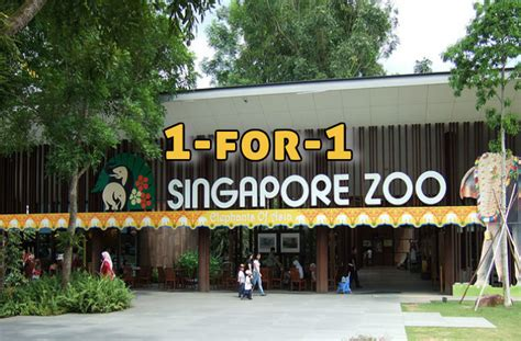 singapore zoo new year 2015 safra 1 for 1 entry to singapore zoo from 5 jul 2015