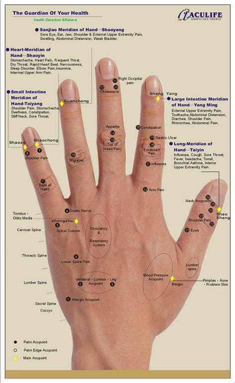 pressure points pressure points palm reading