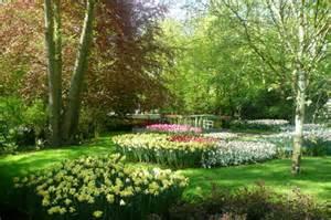 garden nature 2015raparperisydan