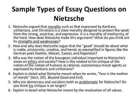Nietzsche Essay by Nietzsche