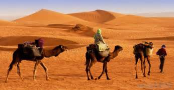 Across north africa and the middle east during the islamic golden age