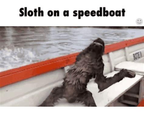 speedboat meme 25 best memes about speed boat fails speed boat fails memes