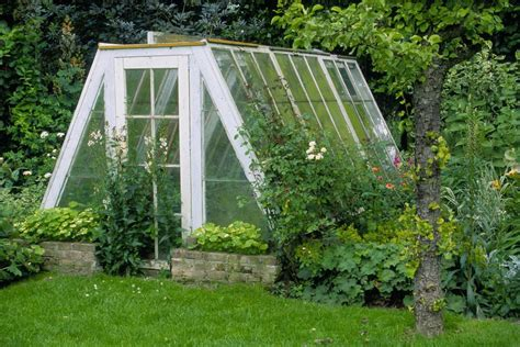 buy a greenhouse for backyard before you buy or build a greenhouse