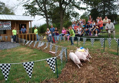 Back Home On The Farm by Pig Race Cool Web Back Home On The Farm