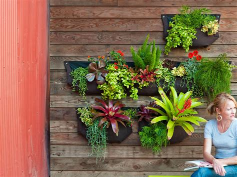How To Make A Hanging Plant Display Sunset Magazine Garden Wall Hanging Baskets