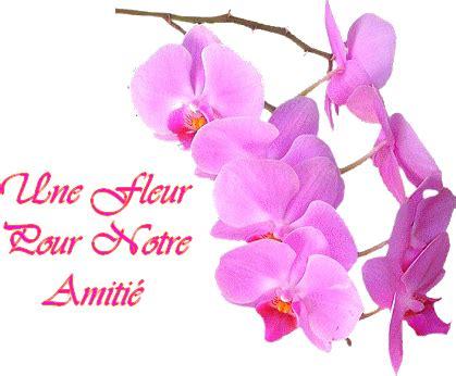 Fleur De L Amitié by Fleur Amiti 233