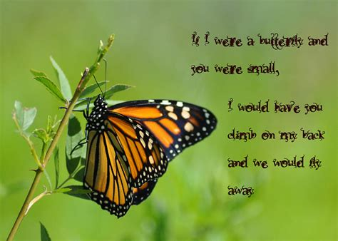 In The Time Of The Butterflies Essay by Mjcessaykhd Web Fc2 In The Time Of The Butterflies Essay