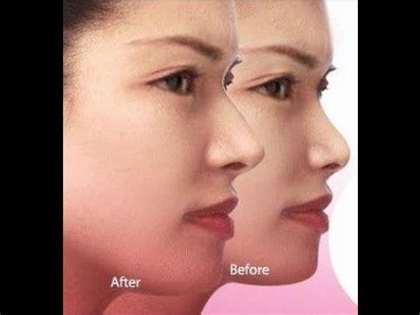 Nose Up Pemancung Hidung Alat Make Up Tools nose up clipper asli alat pemancung hidung alami