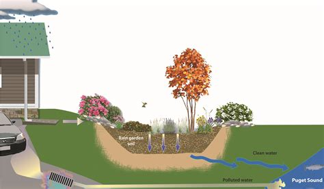 What Is A Garden by What Is A Garden Kitsap Conservation District