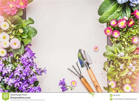 garden flowers a z gardening background with various garden flowers and tools